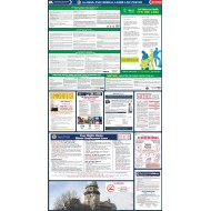 2021 Illinois State and Federal All-In-One Labor Law Poster