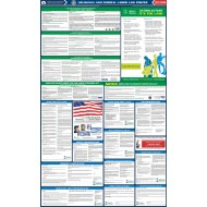 2021 Louisiana State and Federal All-In-One Labor Law Poster