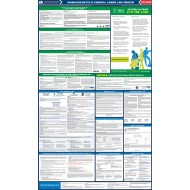 2021 Massachusetts State and Federal All-In-One Labor Law Poster