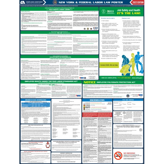 2021 New York Digital State and Federal Labor Law Poster