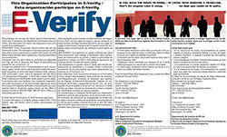 E-Verify and Right to Work Laminated Combo Poster